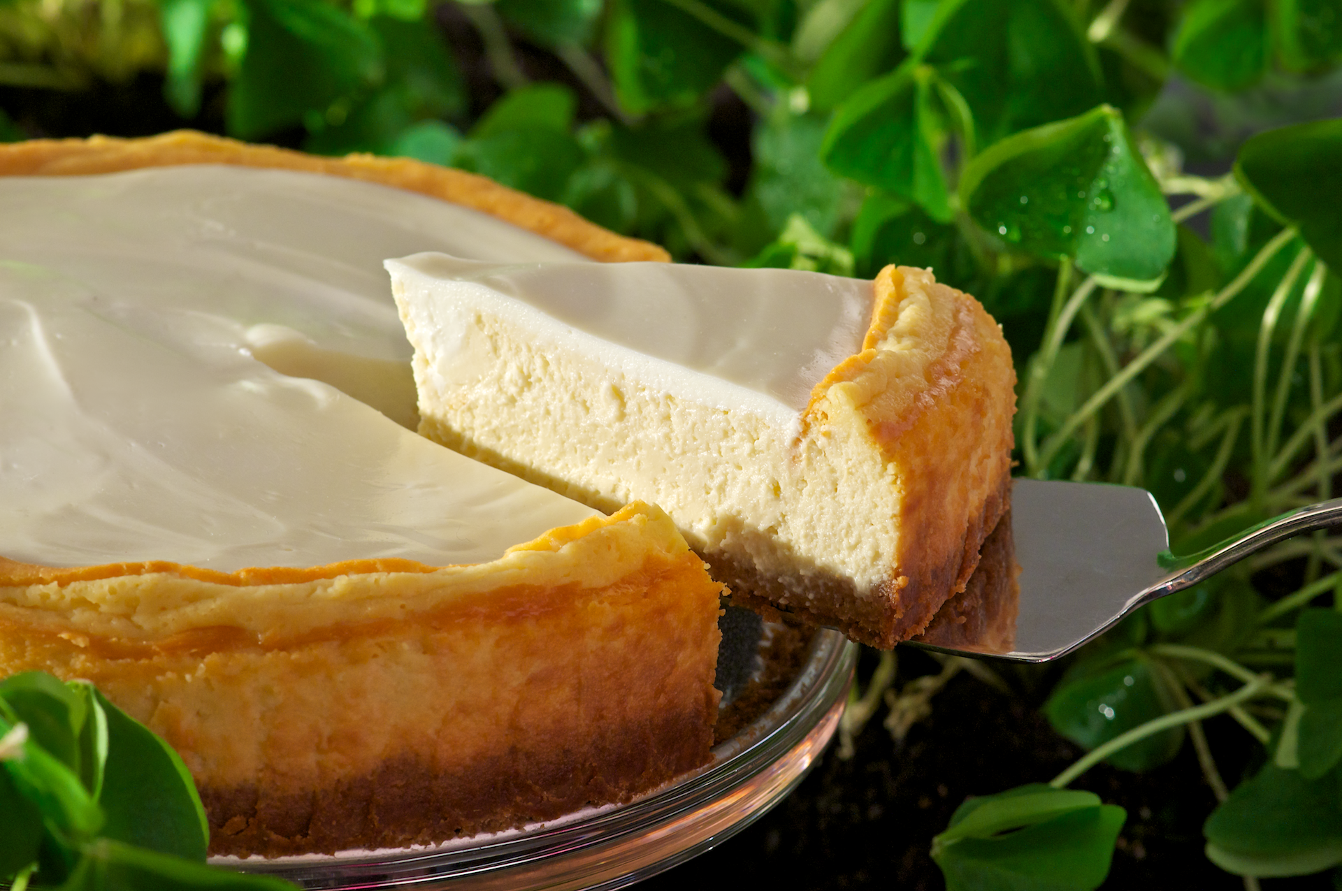 This indulgently delectable cheesecake offers a wonderful balance of Irish Cream liqueur and cream cheese topped with a sweetened sour cream. This recipe would be an ideal choice for a St. Patrick's Day dessert.