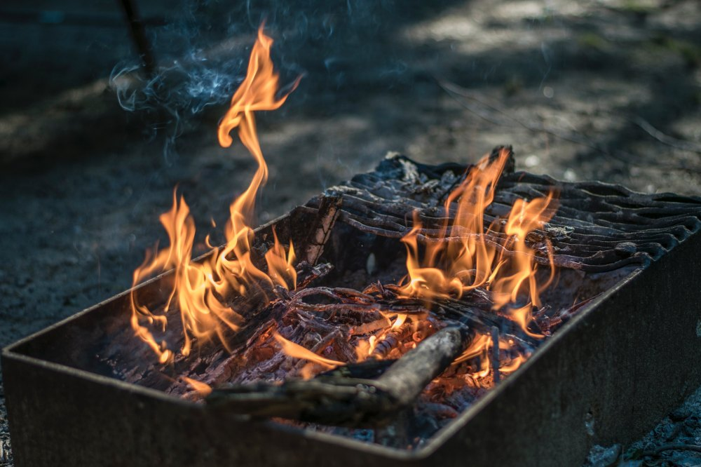 Cooking with wood to enhance the flavor of a dish has been done for centuries but it is only in recent years that chefs and home cooks have started to use the technique regularly.