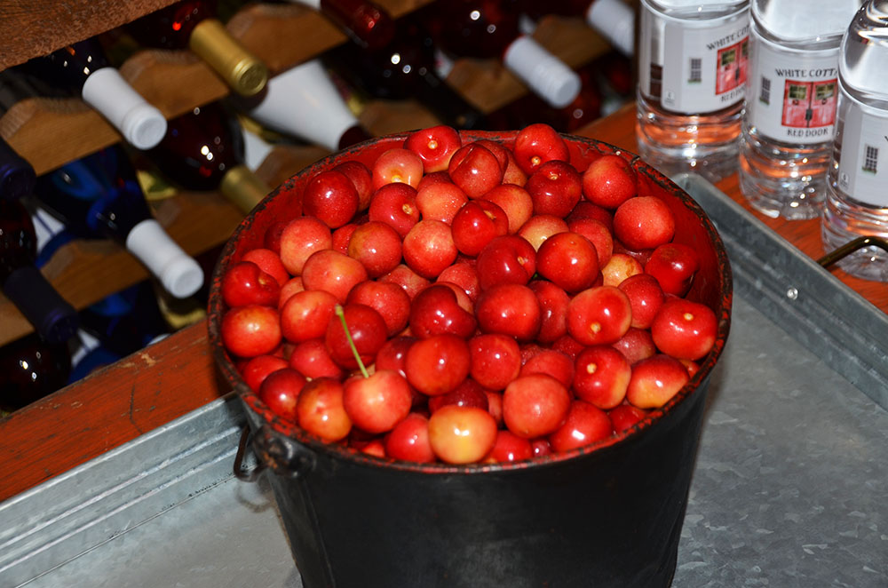 A basket filled with fresh picked cherries at White Cottage Red Door in Door County, Wisconsin.