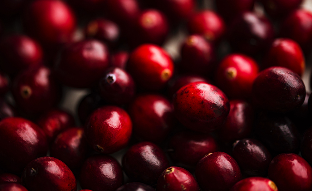 Growing wildly and abundantly from the Pacific northwest to the Atlantic - as well as up into Canada – cranberries were not only prolific but also prized by the native Americans for many reasons and, thanks to hundreds of studies, modern research has confirmed that yes, cranberries are indeed incredible and possess many reasons to prize them – not just as a holiday fruit!