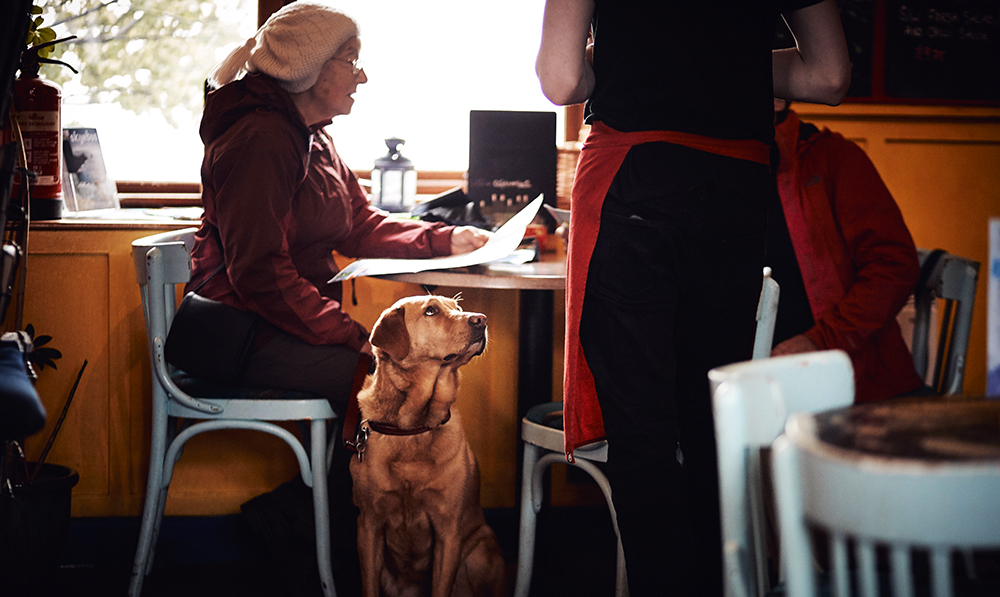 A restaurant server taking an order in a restaurant that allows pets.