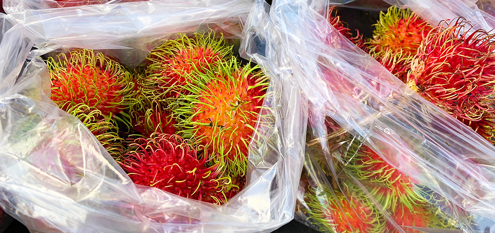 We tasted our way through the market, checking out the wave beans (like green beans, but with wavy edges), the rambutan, the passion fruit, the starfruit, and the wellness stands where you could get tea, turmeric, and other functional ingredients.