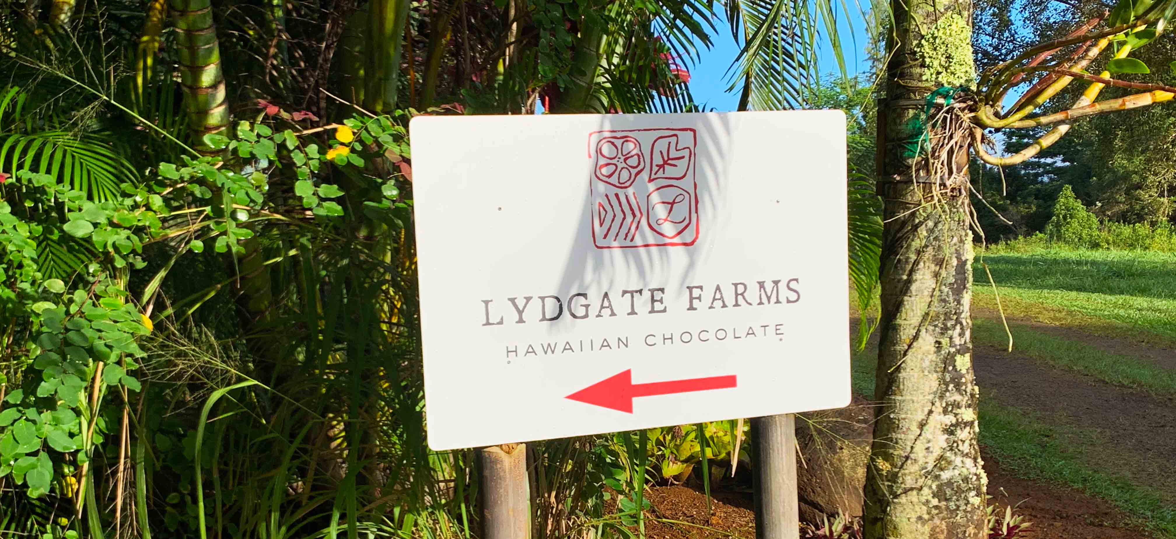 So much chocolate. And fruit. And vanilla. And honey. Lydgate Farms in Kaua'i is truly the place to taste it all.
