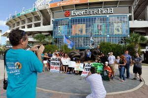 AP TEBOW RALLY FOOTBALL S FBN USA FL