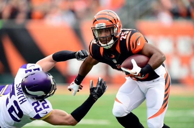 NFL: Minnesota Vikings at Cincinnati Bengals