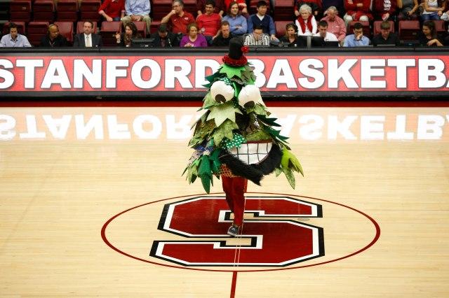 The Stanford, uh, Tree. (Bob Stanton, USA TODAY Sports.)