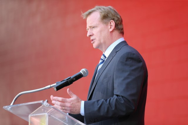 Roger Goodell (Kelley L Cox-USA TODAY Sports)