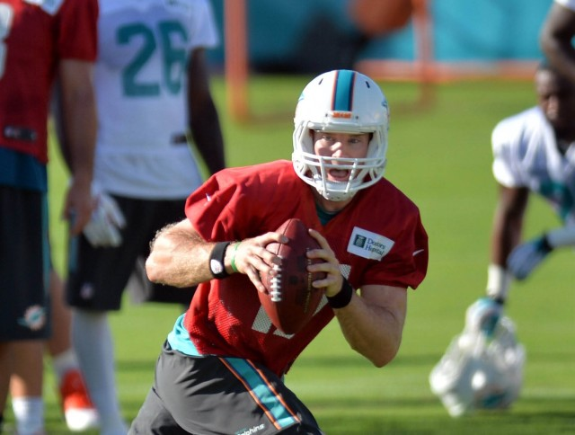If Ryan Tannehill can take the next step, the Dolphins should be a playoff team. (Steve Mitchell, USA TODAY Sports)