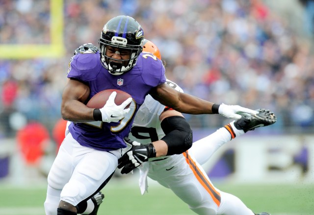 Baltimore Ravens running back Justin Forsett (29) runs with the ball in the first quarter against the Cleveland Browns. (Evan Habeeb-USA TODAY Sports)