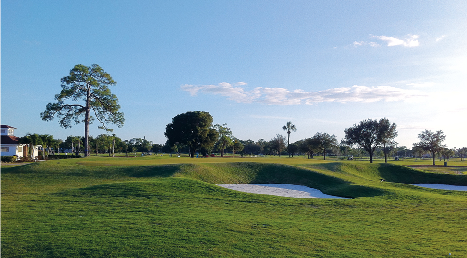 The par-3 14th hole at Fort Myers Country Club
