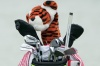 Tiger Woods golf equipment