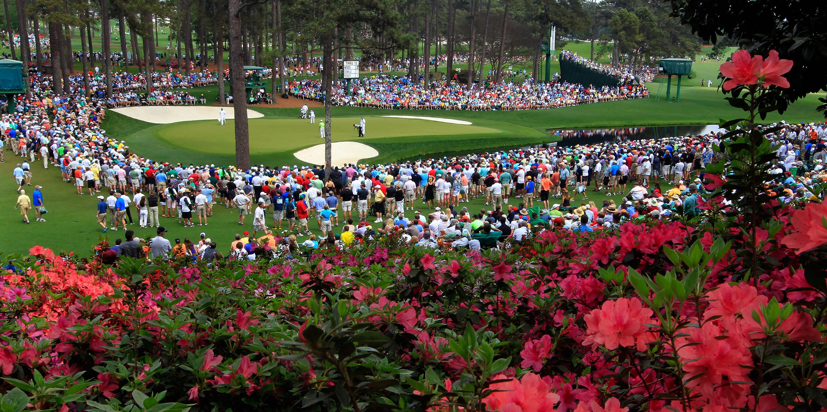 The azaleas were in full bloom overlooking the 16th green during the first round of the Masters at Augusta National Golf Club in Augusta, Georgia, Thursday, April 11, 2013. (Tim Dominick/The State/MCT via Getty Images)