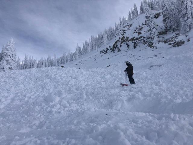 photo of avalanche debris