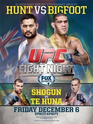 ufc-fight-night-33-poster.jpg