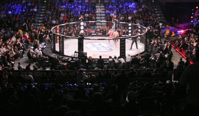 bellator-crowd-2-featured.jpg