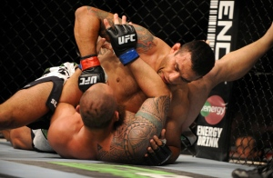 MMA: UFC on FOX 11-Werdum vs Browne