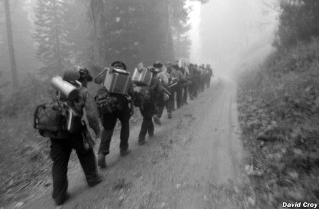lauren-murphy-firefighter