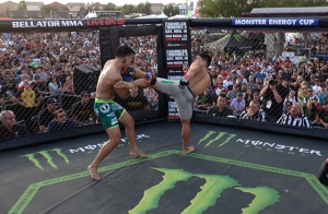 bellator-monster-fight