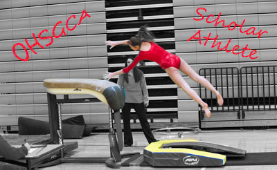 Ohio High School Gymnastics Coaches Association image