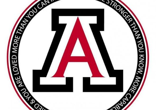 635672184693019420-Alder-Logo-590x590