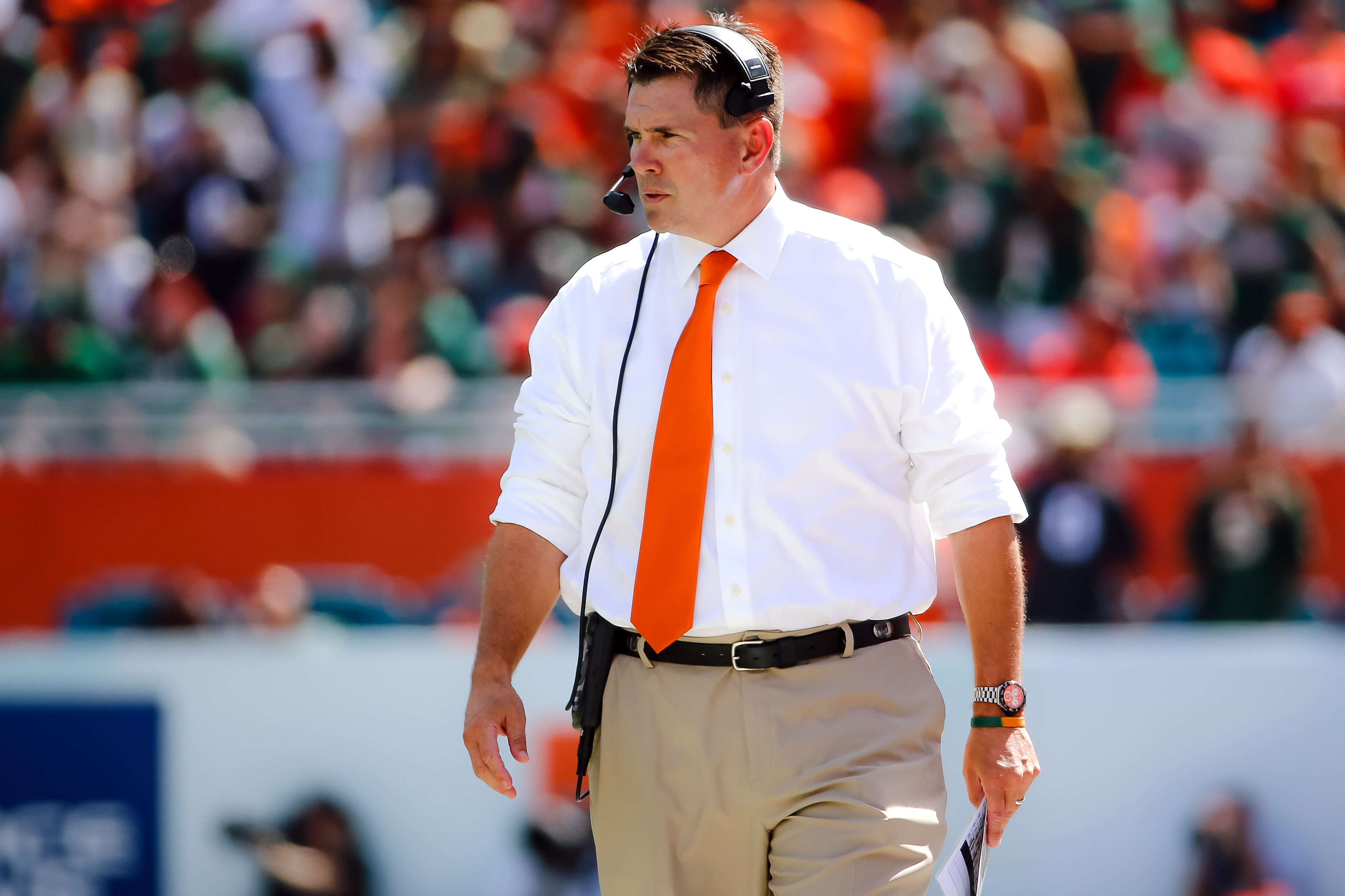 Al Golden could be returning to his home state (Photo: Steve Mitchell, USA TODAY Sports)
