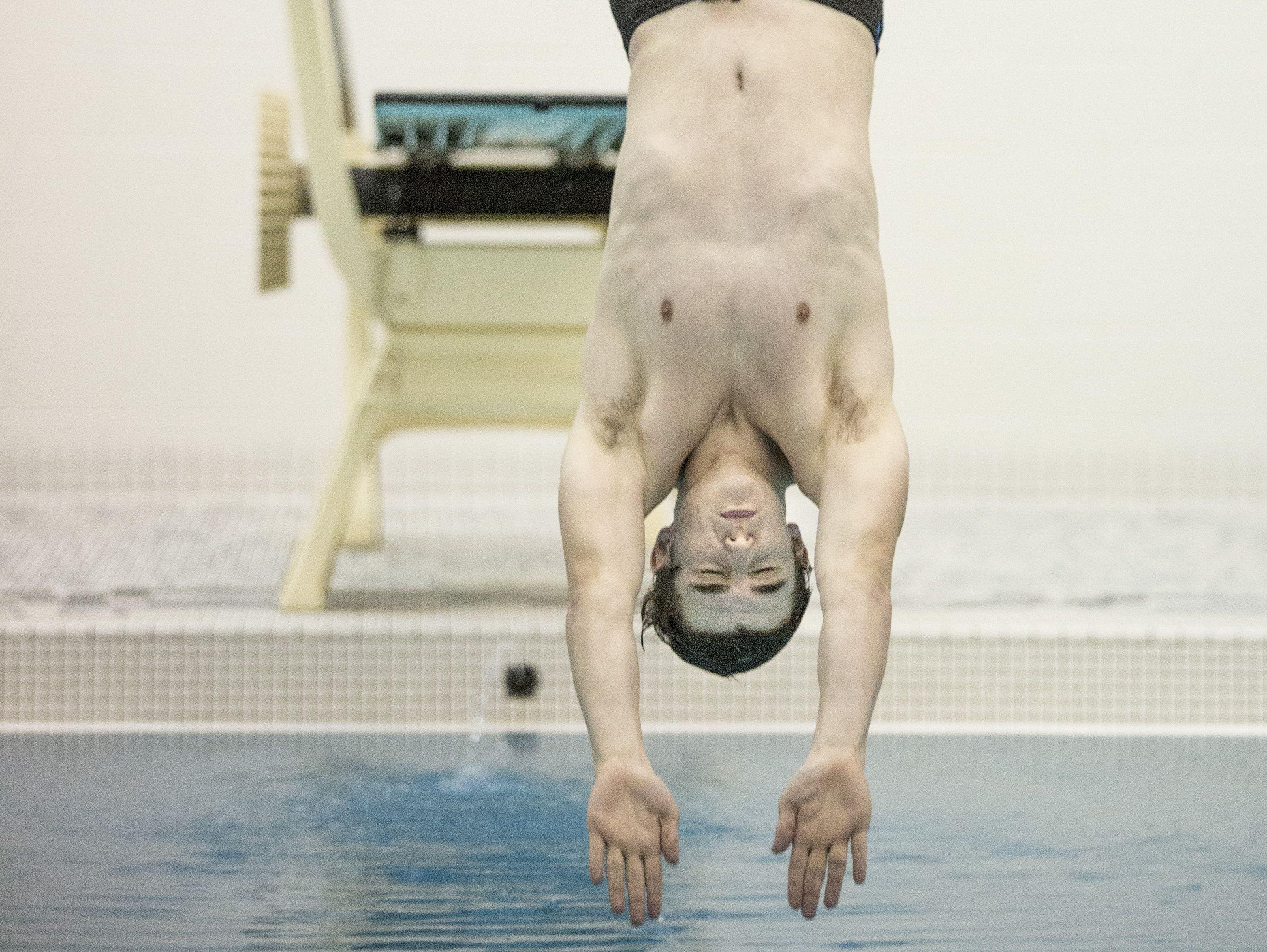 Marysville's Garrett McLane dives during a swim meet Tuesday, Feb. 9, 2016 at Marysville High School.