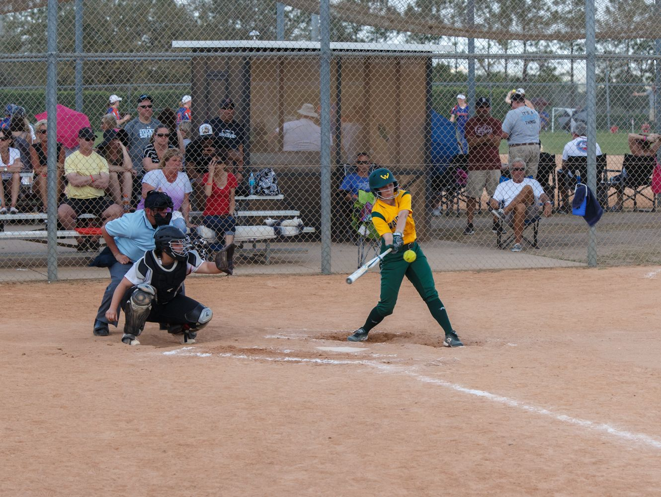 Wayne State sophomore Kylee Barrett takes a swing during the Warriors spring break tournament in Clermont, Fla.