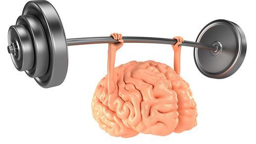brain4816