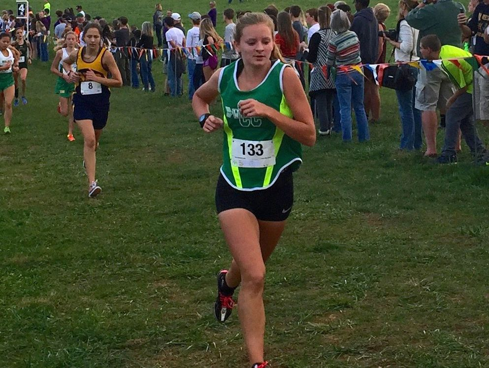 Wilson Memorial's Natalie Prye finished in the top 20 at the Group 2A meet in 2015.