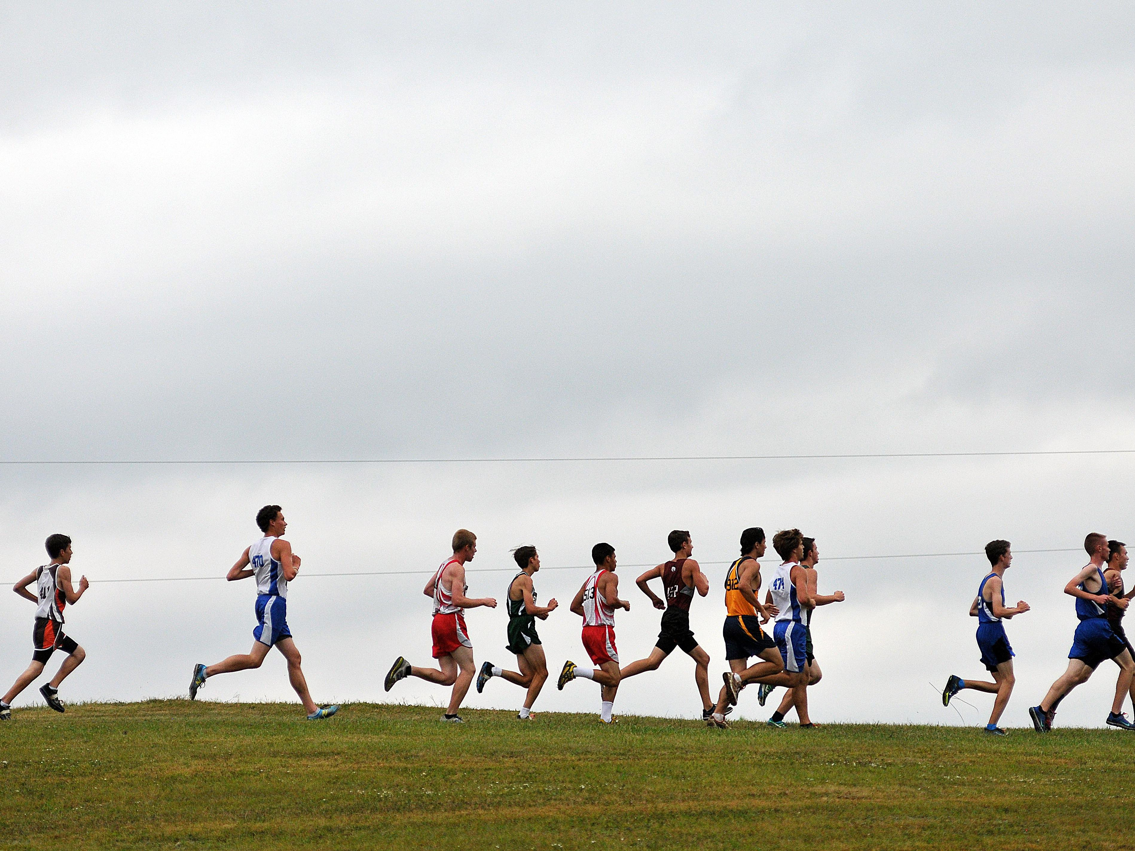 Area boys runners compete at the Galion Cross Country Festival last year. The 2016 cross country season just finished its second weekend.