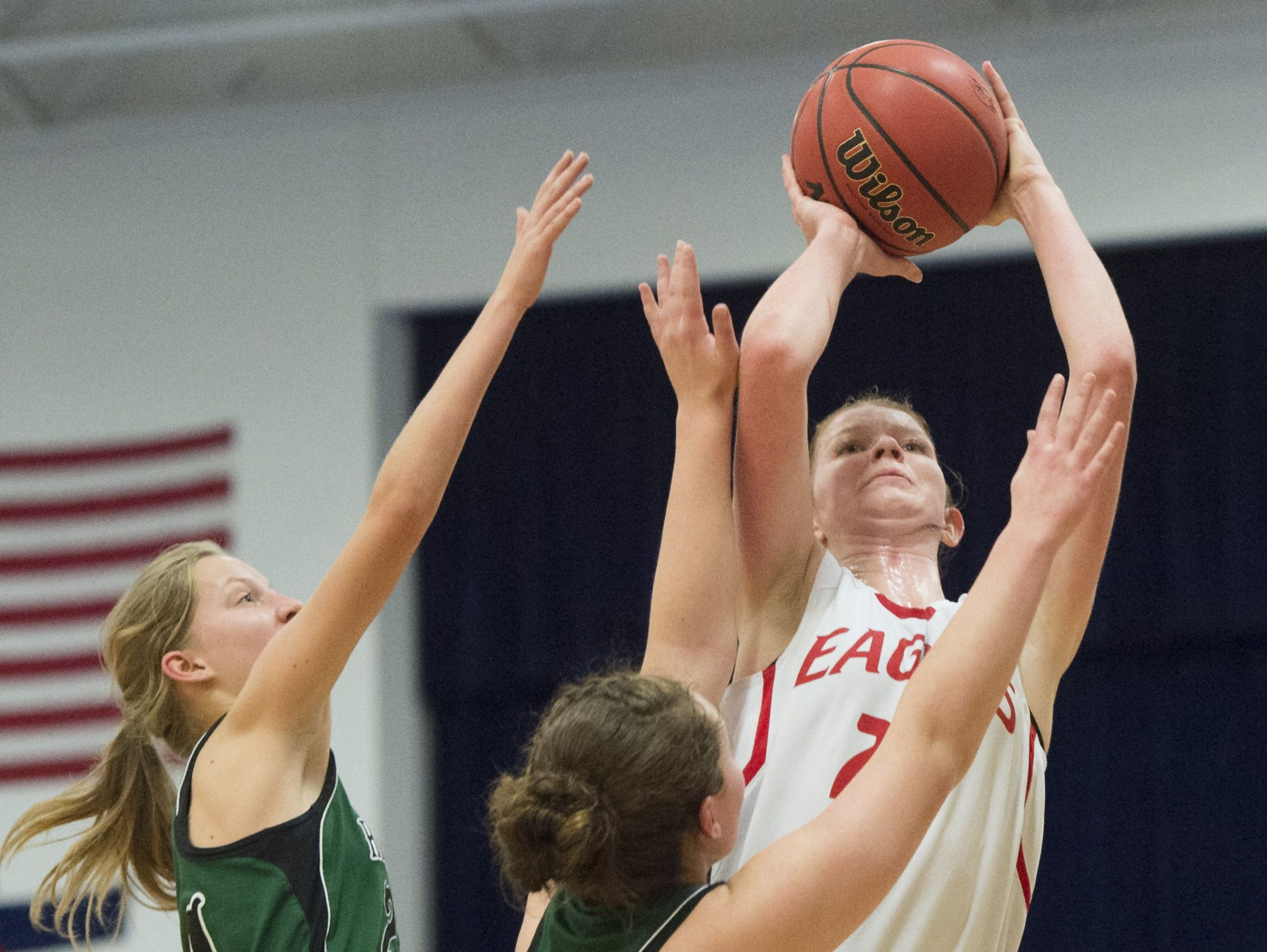 Liberty Common's Halley Miklos has verbally committed to play college basketball at Cornell University.