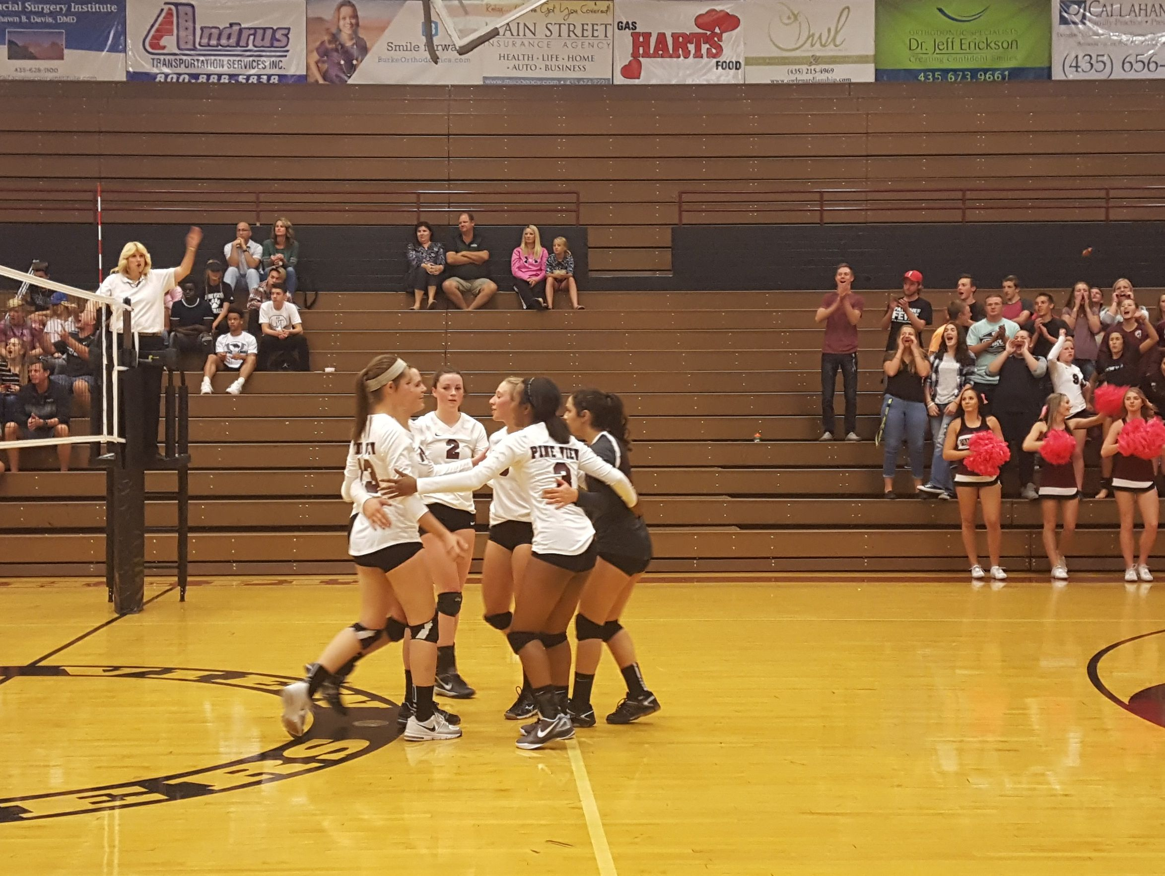 Pine View volleyball players celebrate during their win over Snow Canyon, October 6, 2016.