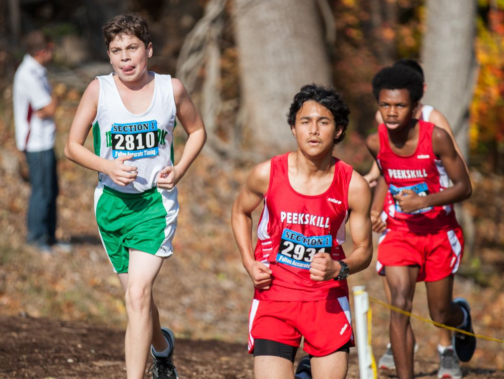 The Westchester County Cross-Country Champions were held at Woodlands High School in Hartsdale, October 30, 2016