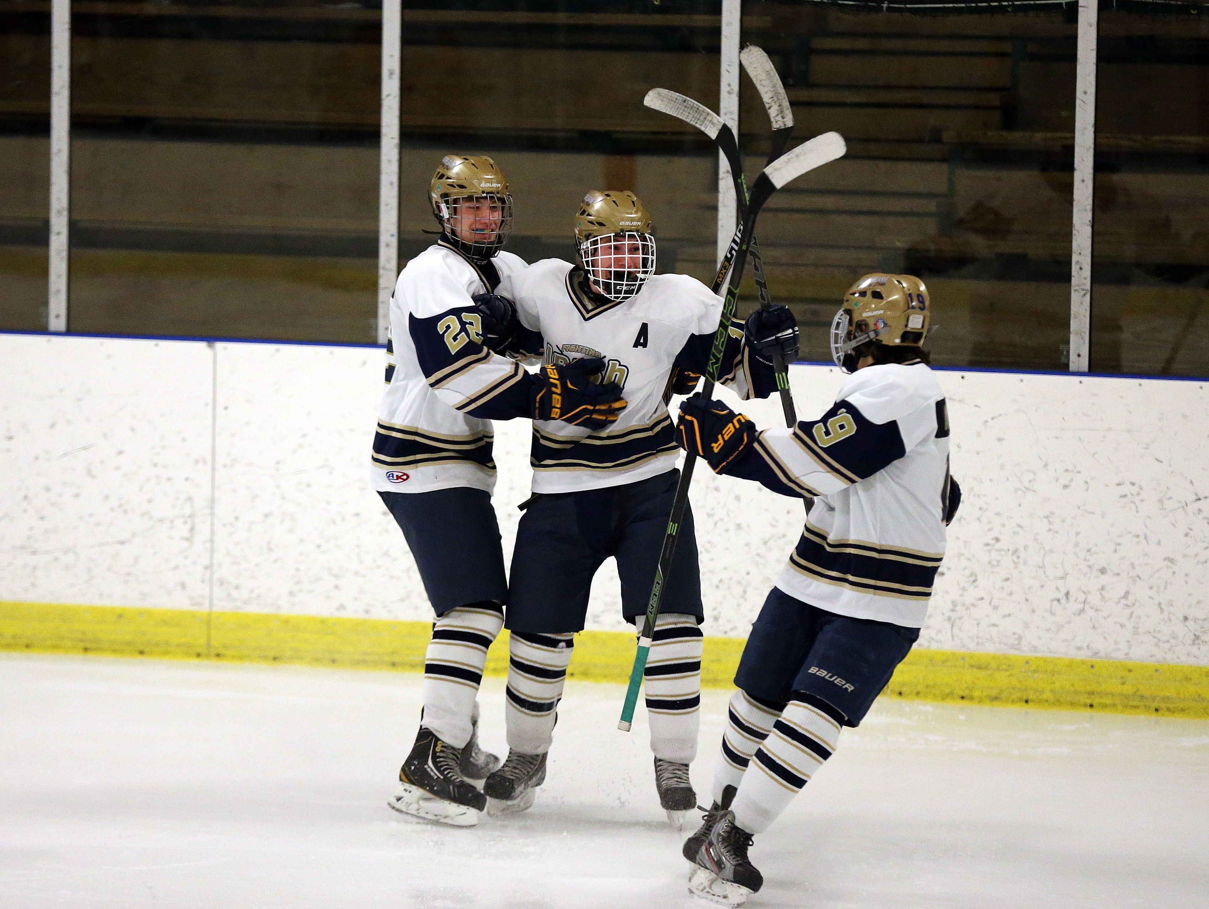 Batavia Notre Dame's Ryan Webster, center, celebrates his goal with teammates Henrik Toiviainen, left, and Ryan Antinore in a game against Rush-Henrietta.
