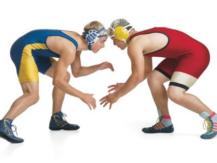 Section V Wrestling Hall of Fame inductees will have their names added to the plaque in the lobby of Red Fedele's Brook House in Greece.