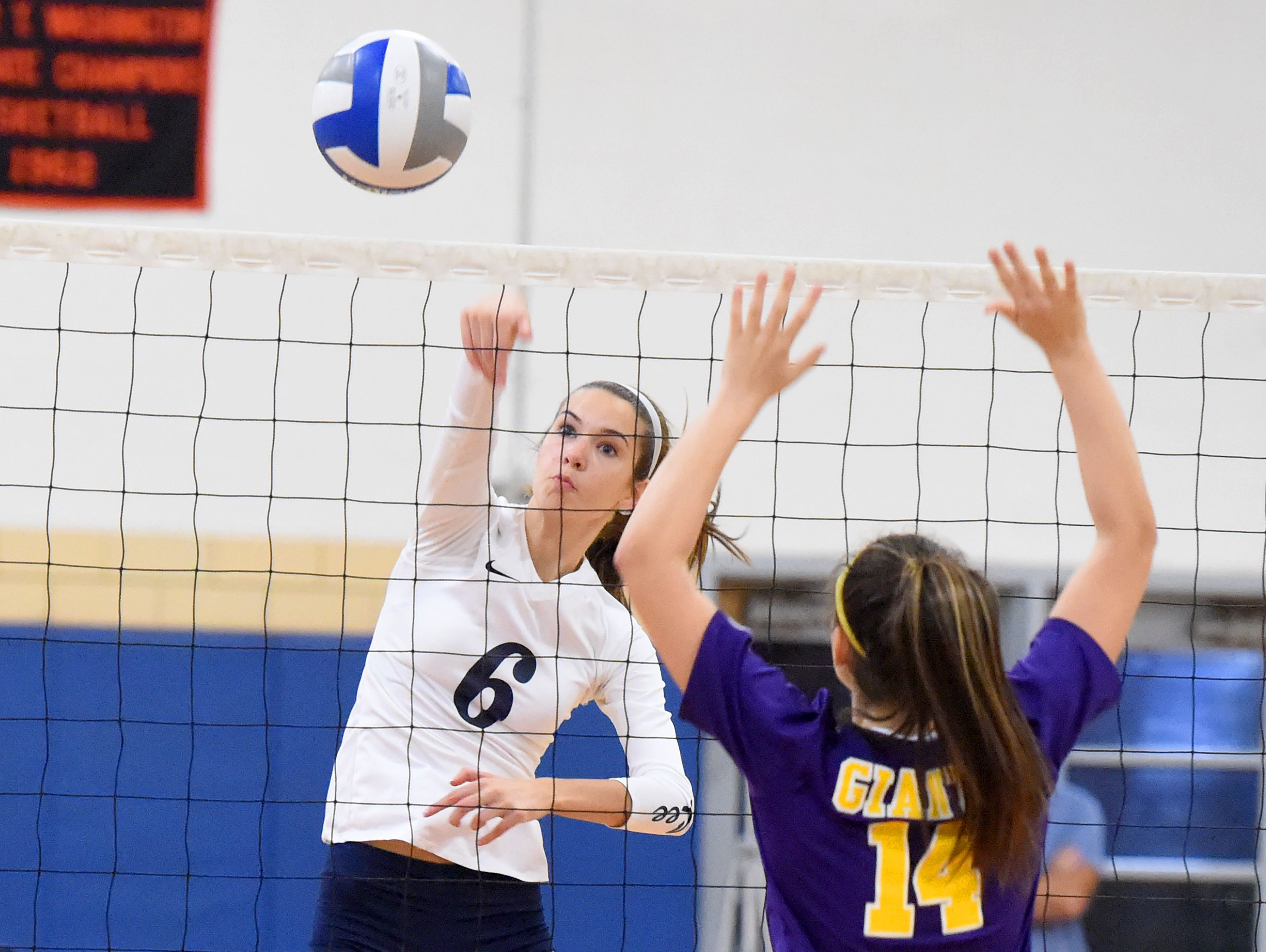 Robert E. Lee's Jennifer Williams was named to the first team all-Valley District volleyball team.
