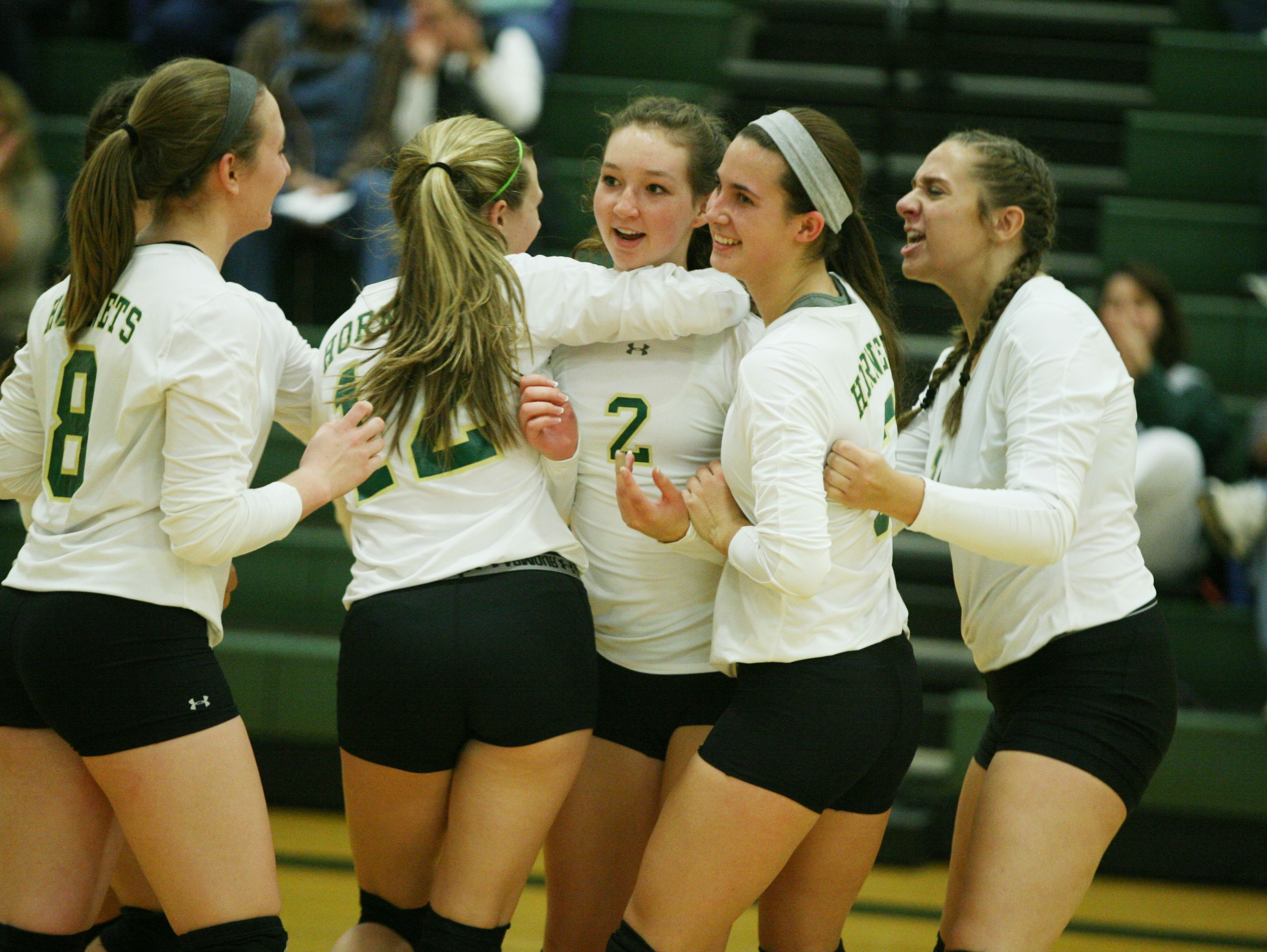 Wilson Memorial players celebrate after winning the first game against East Rockingham during the Conference 36 quarterfinal match at Wilson Memorial in Fishersville on Tuesday, Nov. 1, 2016.