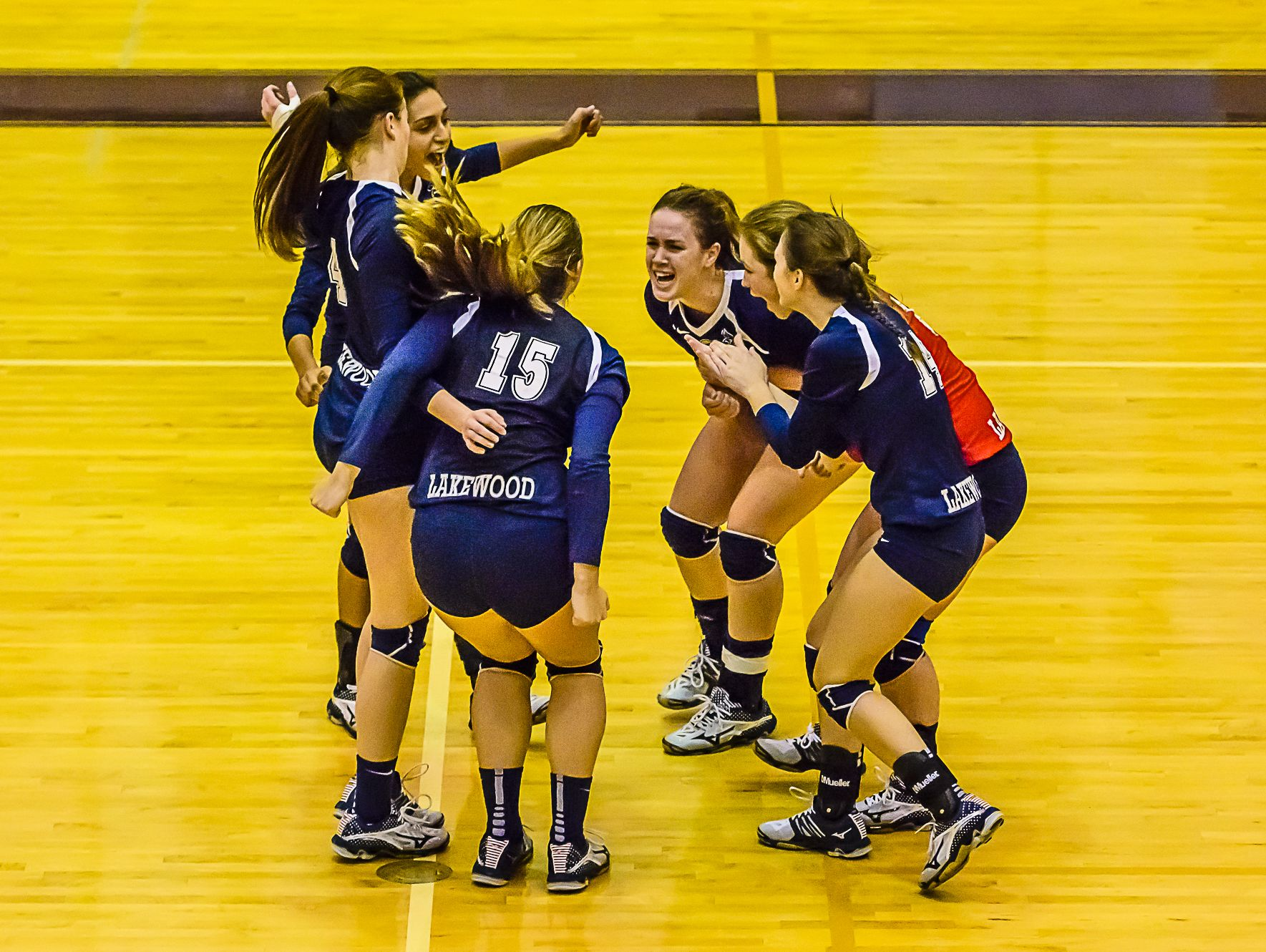 Members of the Lakewood volleyball team celebrate their straight set win over Olivet during their Class B regional semifinal game Tuesday, Nov. 8, 2016, in Fowlerville.
